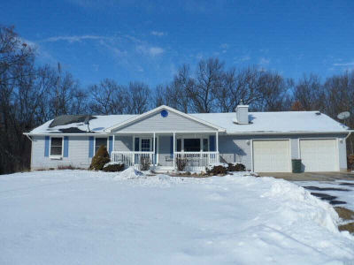 Grass Lake MI Single Family Home For Sale: $364,900