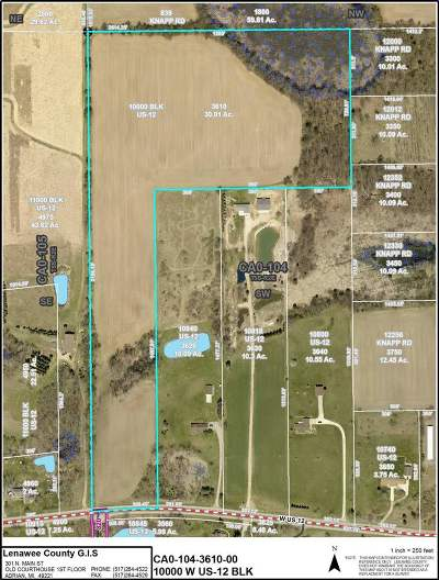 Brooklyn MI Residential Lots & Land For Sale: $130,000