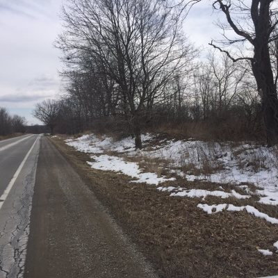Addison MI Residential Lots & Land For Sale: $249,900