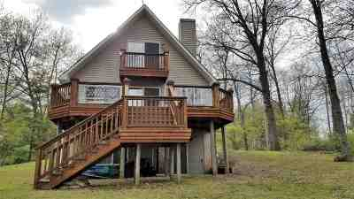 Onsted MI Single Family Home For Sale: $224,900