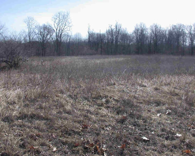 Manchester MI Residential Lots & Land For Sale: $99,000