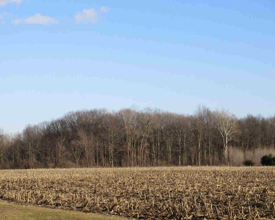 Willis MI Residential Lots & Land For Sale: $84,900