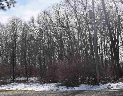 Chelsea MI Residential Lots & Land For Sale: $74,900