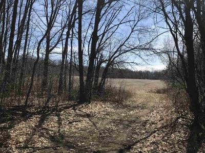 Jonesville MI Residential Lots & Land For Sale: $142,500