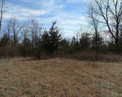 Bridgewater MI Residential Lots & Land For Sale: $129,900