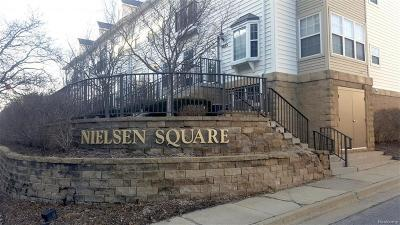 Washtenaw County Condo/Townhouse For Sale: 1017 Maiden Lane