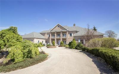 Stockbridge Single Family Home For Sale: 4801 Haynes Rd