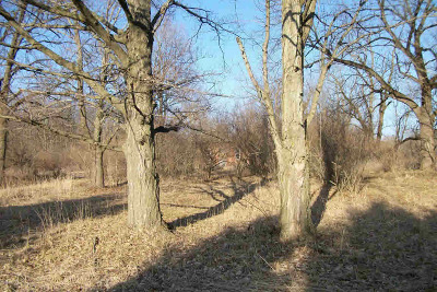 Hillsdale MI Residential Lots & Land For Sale: $55,500