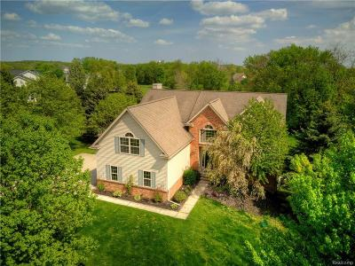 Washtenaw County Single Family Home For Sale: 5542 Deer Run Ln