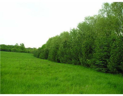 Ann Arbor MI Residential Lots & Land For Sale: $5,940,000