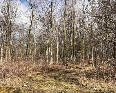 Ann Arbor MI Residential Lots & Land For Sale: $1,145,336