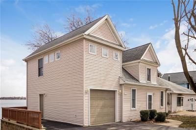 Whitmore Lake MI Single Family Home For Sale: $369,000
