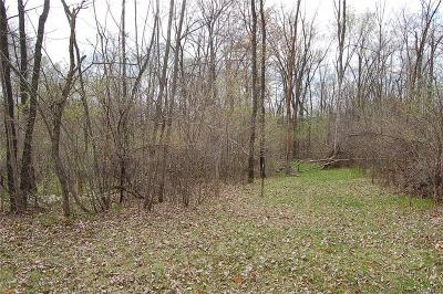 Clinton MI Residential Lots & Land For Sale: $49,900