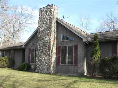 Onsted Single Family Home For Sale: 10239 Bridge