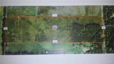 Camden MI Residential Lots & Land For Sale: $39,500