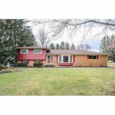 Washtenaw County Single Family Home For Sale: 8442 Lawrence