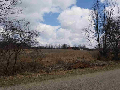 Hillsdale MI Residential Lots & Land For Sale: $240,000