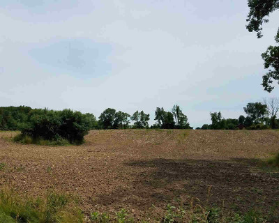 Dexter MI Residential Lots & Land For Sale: $80,000