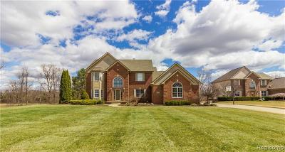 Milford Single Family Home For Sale: 3241 Katie Ln
