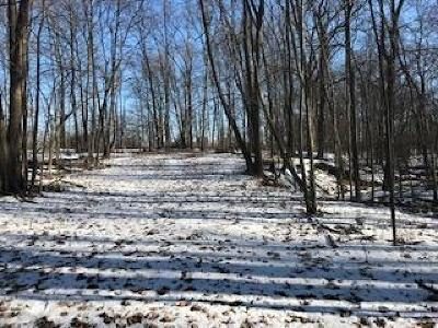 Saline MI Residential Lots & Land For Sale: $468,000