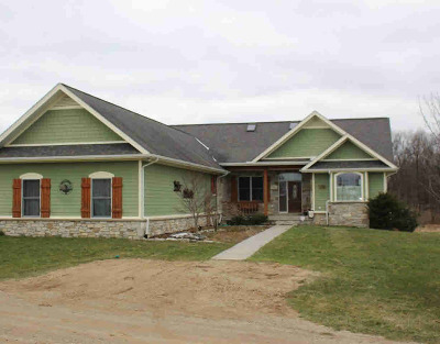 Grass Lake MI Single Family Home For Sale: $424,900