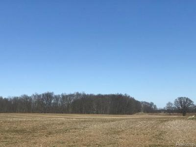 Dexter MI Residential Lots & Land For Sale: $875,000