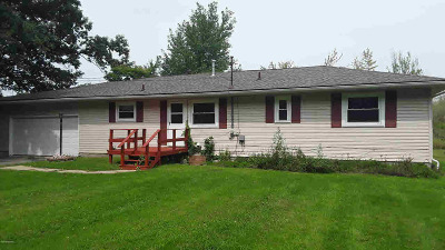 Reading MI Single Family Home For Sale: $145,000