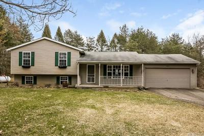Single Family Home For Sale: 18059 Ledgestone