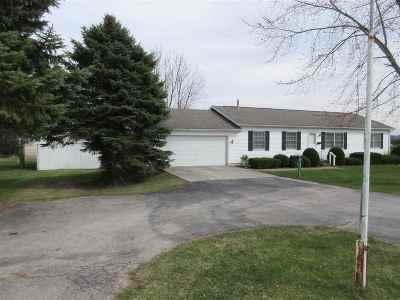 Britton MI Single Family Home For Sale: $200,000