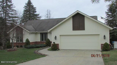 Hillsdale Single Family Home For Sale: 4149 Kim Dr