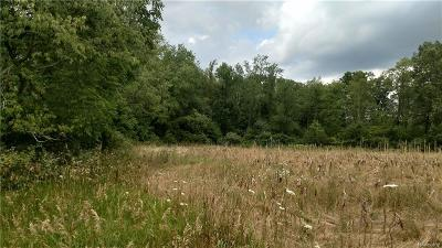 Chelsea MI Residential Lots & Land For Sale: $250,000