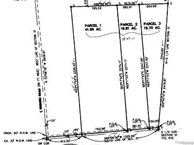 Jackson County, Lenawee County, Hillsdale County, Washtenaw County Residential Lots & Land For Sale: 5295 Joy Road