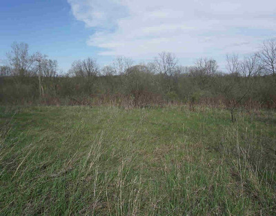 Chelsea MI Residential Lots & Land For Sale: $165,000