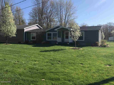 Reading MI Single Family Home For Sale: $129,900