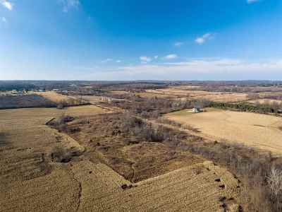 Onsted MI Residential Lots & Land For Sale: $55,000