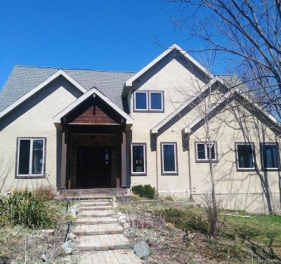 Grass Lake Single Family Home For Sale: 13035 Trist Rd