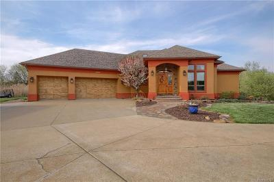 Washtenaw County Single Family Home For Sale: 9025 N Territorial Rd