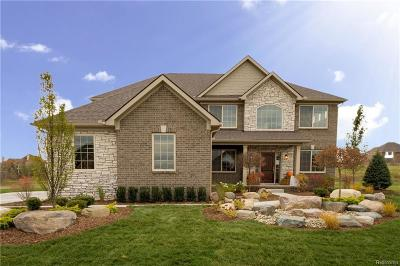 Single Family Home For Sale: 301 Willow Lake