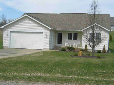 Cement City MI Single Family Home For Sale: $164,900