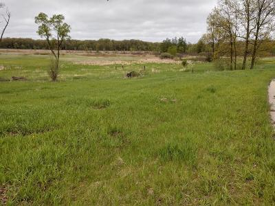Grass Lake MI Residential Lots & Land For Sale: $70,000