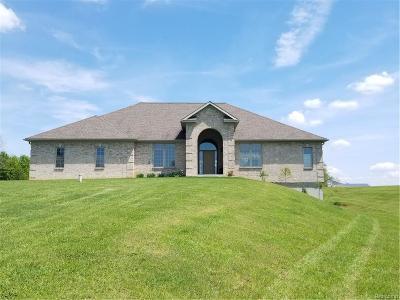 Eaton Rapids Single Family Home For Sale: 4227 Eaton River Trl