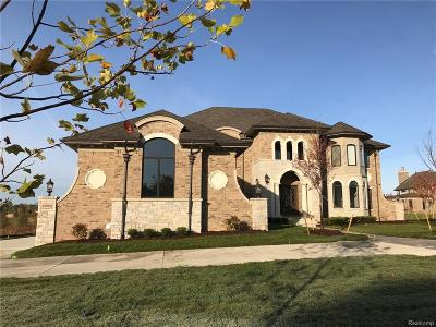 Northville Single Family Home For Sale: 18989 Chaumont Way