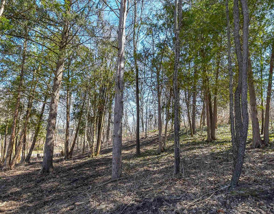 Residential Lots & Land For Sale: 245 Parklake Ave