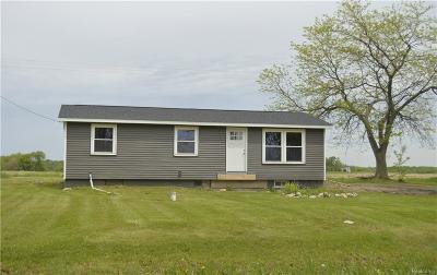 Stockbridge Single Family Home For Sale: 4439 Swan Rd