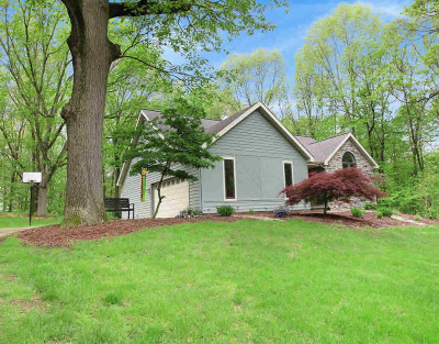 Washtenaw County Single Family Home For Sale: 683 Wald Strasse