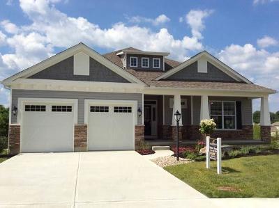 Northville Single Family Home For Sale: 23779 Novi Rd