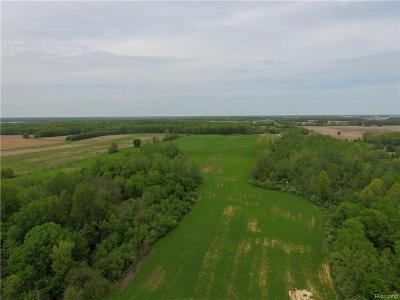 Tecumseh MI Residential Lots & Land For Sale: $150,000