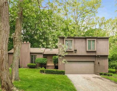 Washtenaw County Single Family Home For Sale: 1610 Kearney Rd