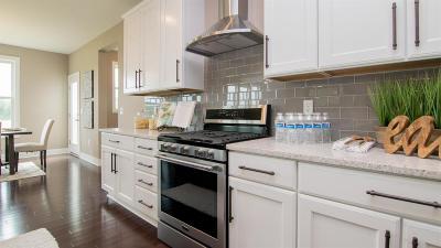 Dexter Single Family Home For Sale: 4454 Lake Vista Dr