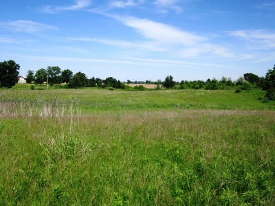 Hudson MI Residential Lots & Land For Sale: $42,500